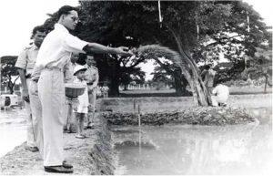 his-majesty-the-king-bhumibhol-adulyadej-royal-project-nile-fish