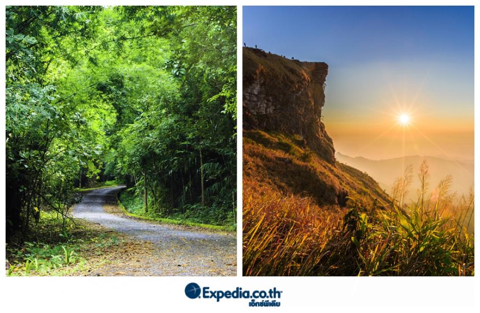 10 เส้นทาง Road Trip ชมธรรมชาติสวยในไทยเชียงราย – แม่สาย – เชียงของ – ภูชี้ฟ้า