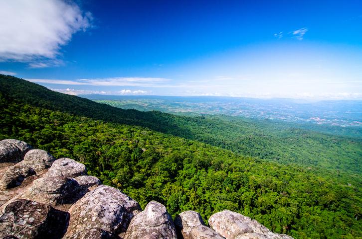 อุทยานแห่งชาติภูหินร่องกล้า จ. เลย จ. พิษณุโลก และ จ. เพชรบูรณ์-2