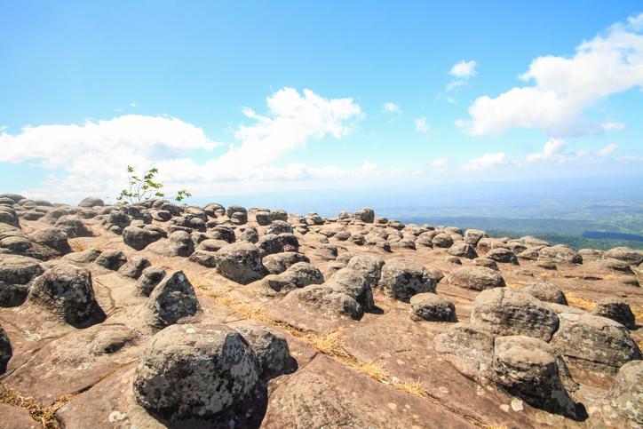 อุทยานแห่งชาติภูหินร่องกล้า จ. เลย จ. พิษณุโลก และ จ. เพชรบูรณ์-3