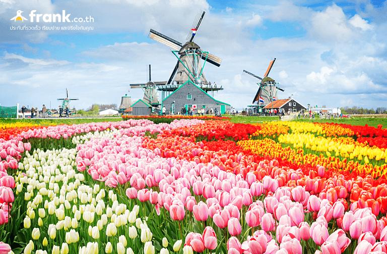 เที่ยวต่างประเทศเดือนเมษายนเนเธอร์แลนด์