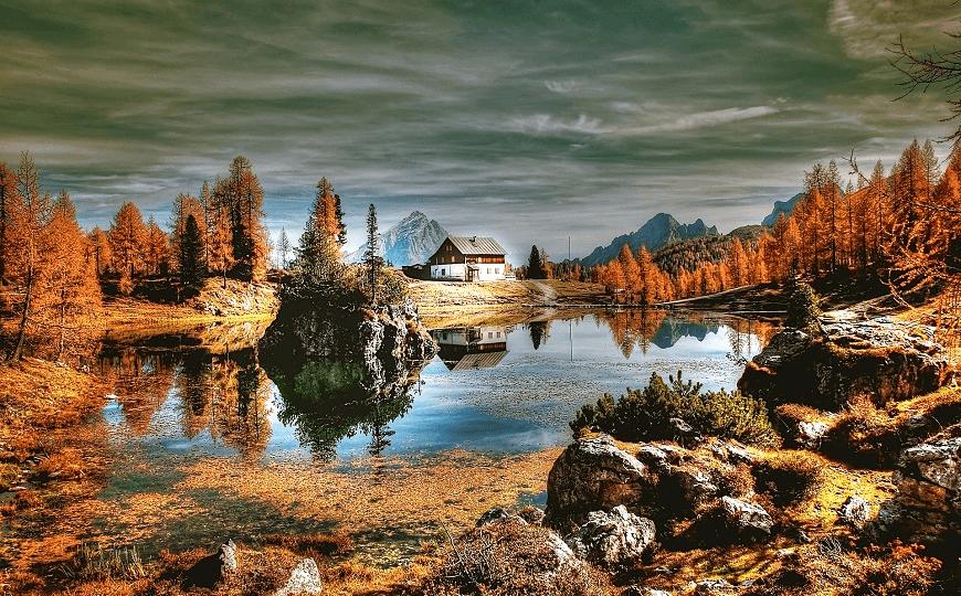 ใบไม้เปลี่ยนสียุโรป