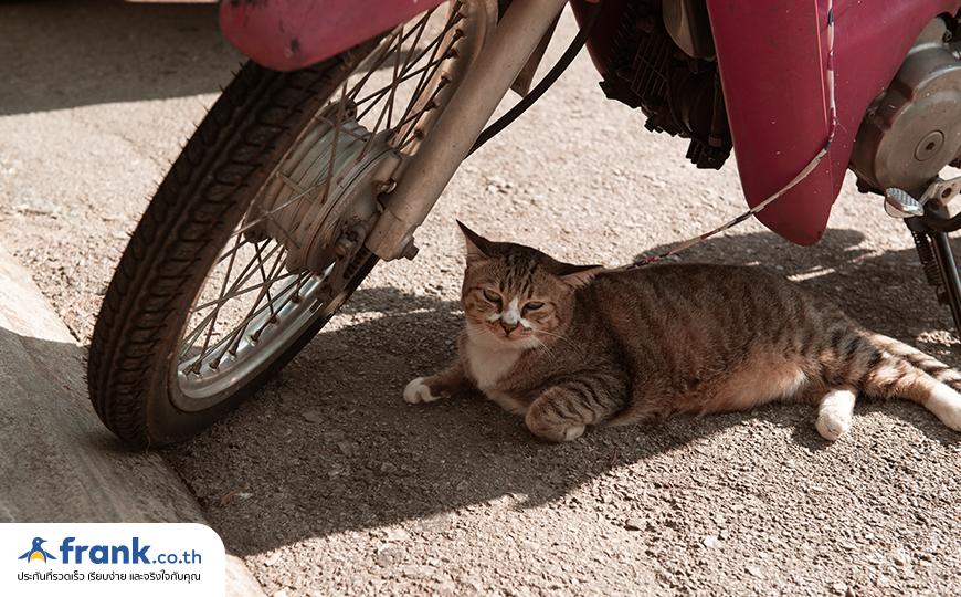 พรบ รถจักรยานยนต์